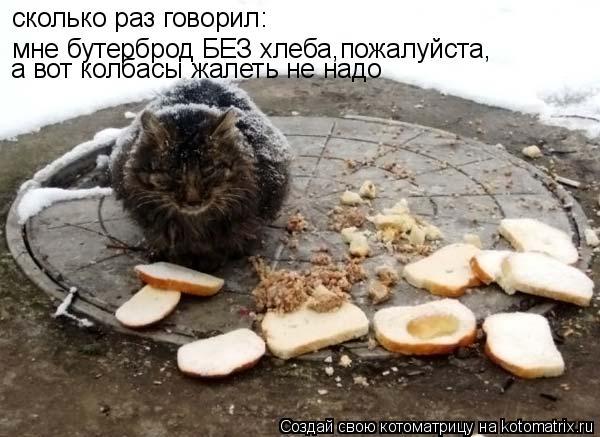 Котоматрица: сколько раз говорил:  мне бутерброд БЕЗ хлеба,пожалуйста, а вот колбасы жалеть не надо