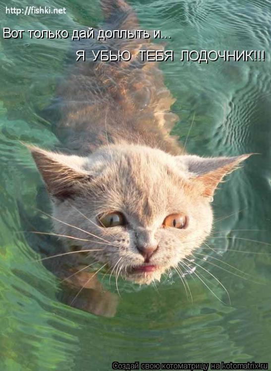 Котоматрица: Вот только дай доплыть и... Я  УБЬЮ  ТЕБЯ  ЛОДОЧНИК!!!