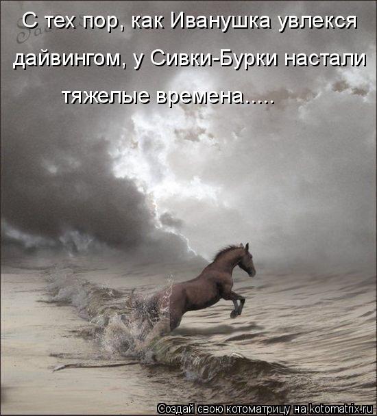 Котоматрица: С тех пор, как Иванушка увлекся  дайвингом, у Сивки-Бурки настали тяжелые времена.....