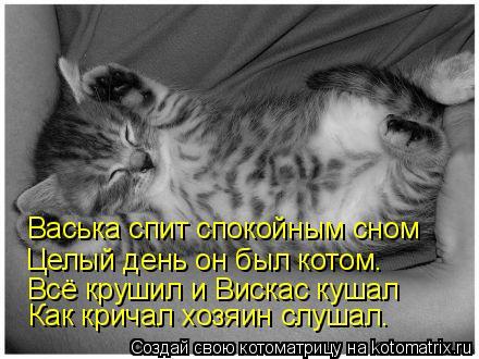 Котоматрица: Васька спит спокойным сном Целый день он был котом. Всё крушил и Вискас кушал Как кричал хозяин слушал.