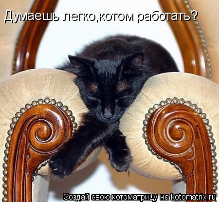 Котоматрица: Думаешь легко,котом работать?