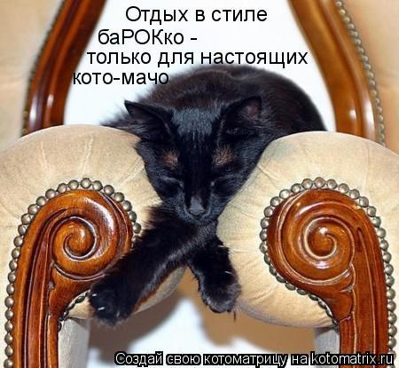 Котоматрица: Отдых в стиле баРОКко - только для настоящих кото-мачо