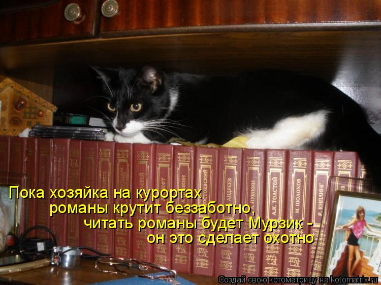 Котоматрица: Пока хозяйка на курортах романы крутит беззаботно, читать романы будет Мурзик - он это сделает охотно