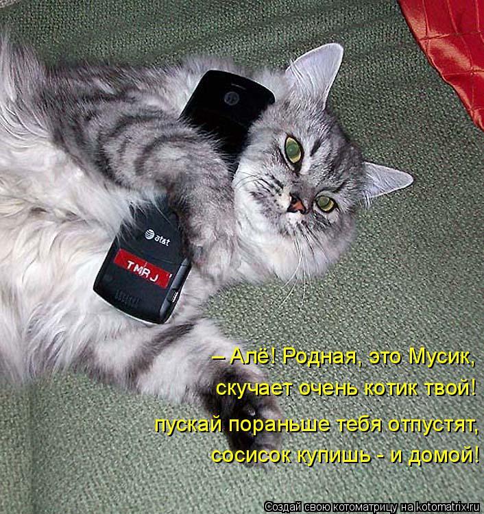 Котоматрица: – Алё! Родная, это Мусик, пускай пораньше тебя отпустят, сосисок купишь - и домой! скучает очень котик твой!