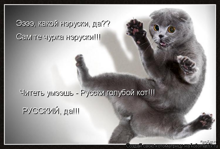 Котоматрица: Ээээ, какой нэруски, да?? Сам те чурка нэруски!!! Читеть умээшь - Русски голубой кот!!! РУССКИЙ, да!!!