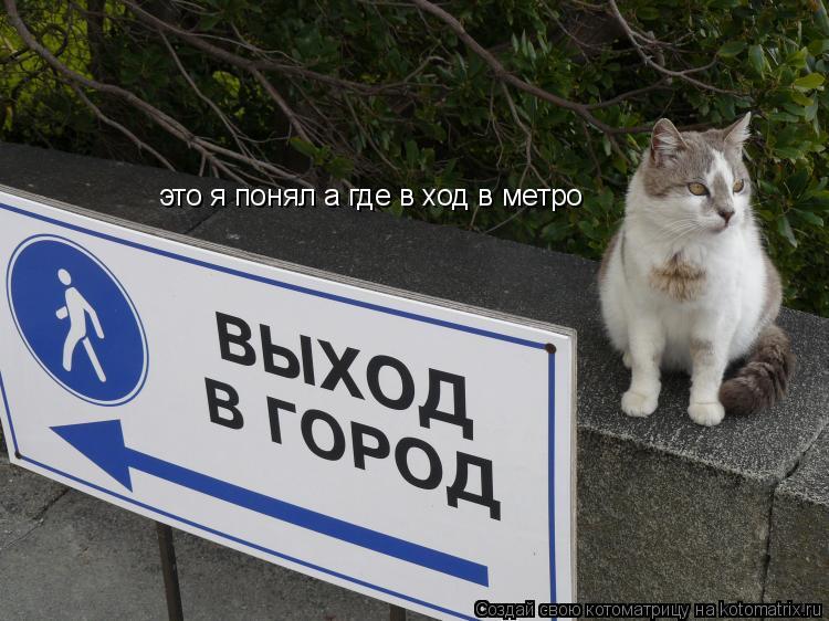 Котоматрица: это я понял а где в ход в метро