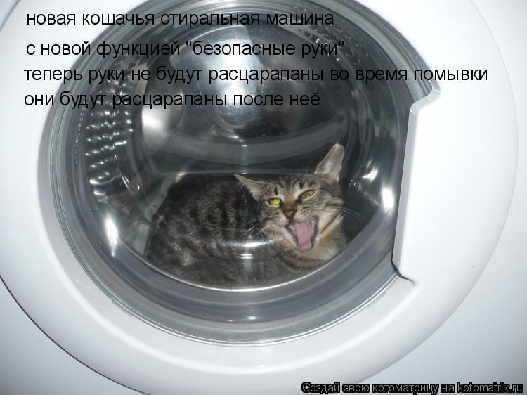 """Котоматрица: новая кошачья стиральная машина с новой функцией """"безопасные руки"""" теперь руки не будут расцарапаны во время помывки они будут расцарапаны"""