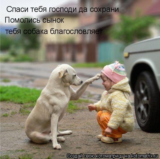Котоматрица: Спаси тебя господи да сохрани Помолись сынок  тебя собака благословляет