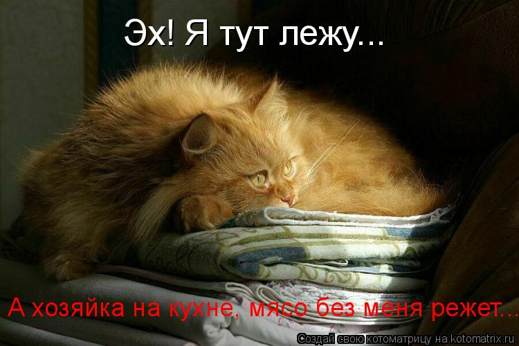 Котоматрица: А хозяйка на кухне, мясо без меня режет... Эх! Я тут лежу...