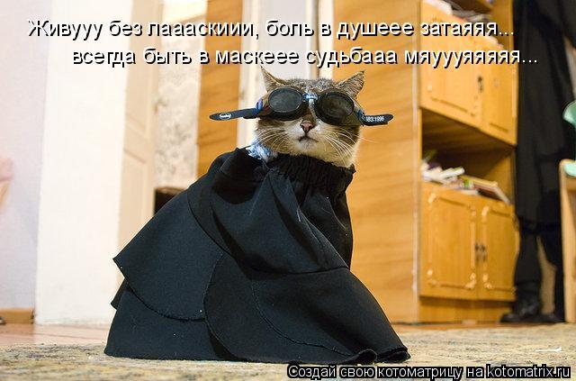 Котоматрица: Живууу без лаааскиии, боль в душеее затаяяя... всегда быть в маскеее судьбааа мяуууяяяяя...
