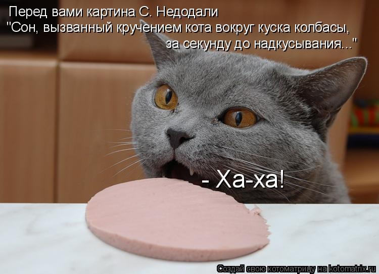 """Котоматрица: Перед вами картина С. Недодали """"Сон, вызванный кручением кота вокруг куска колбасы, за секунду до надкусывания..."""" - Ха-ха!"""
