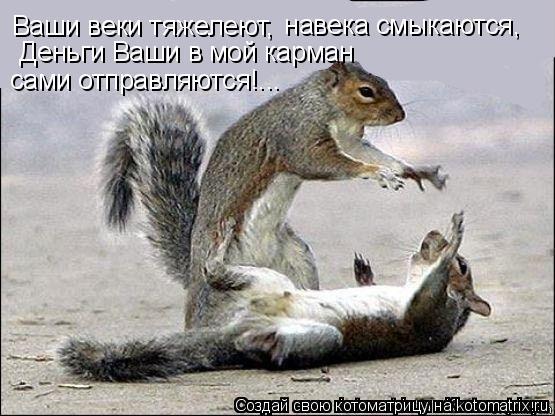 Котоматрица: Ваши веки тяжелеют,   навека смыкаются,   Деньги Ваши в мой карман  сами отправляются!...