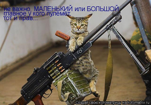 Котоматрица: не важно, МАЛЕНЬКИЙ или БОЛЬШОЙ главное у кого пулемёт, тот и прав...