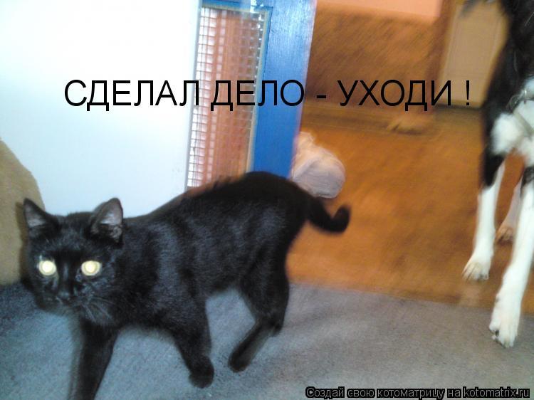 Котоматрица: СДЕЛАЛ ДЕЛО - УХОДИ !