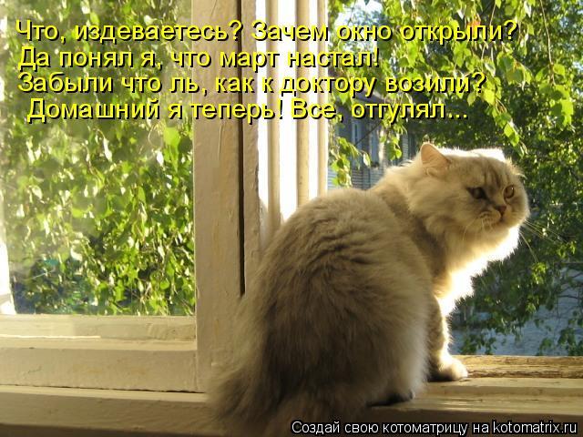 Котоматрица: Что, издеваетесь? Зачем окно открыли? Забыли что ль, как к доктору возили? Да понял я, что март настал!  Домашний я теперь! Все, отгулял...