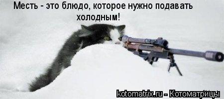 Котоматрица: Месть - это блюдо, которое нужно подавать холодным!