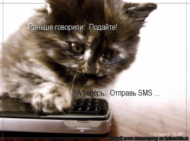 Котоматрица: Раньше говорили: «Подайте!»  А теперь: «Отправь SMS»...