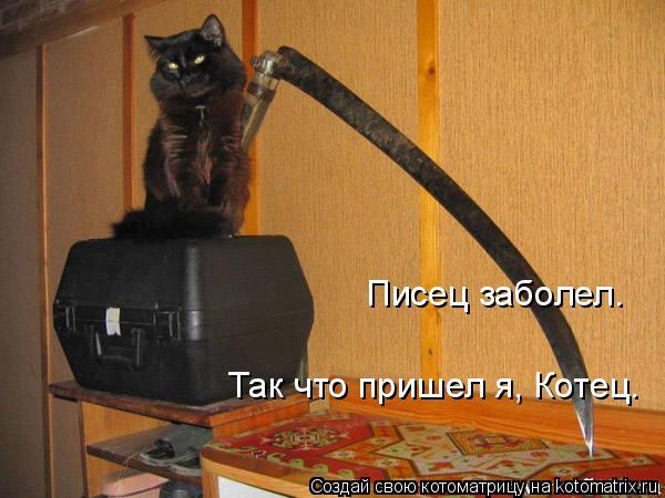 Котоматрица: Писец заболел.  Так что пришел я, Котец.