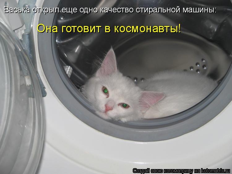 Котоматрица: Васька открыл еще одно качество стиральной машины: Она готовит в космонавты!