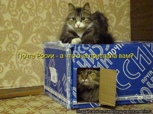 Котоматрица: Почта Росии - а что она прислала вам?