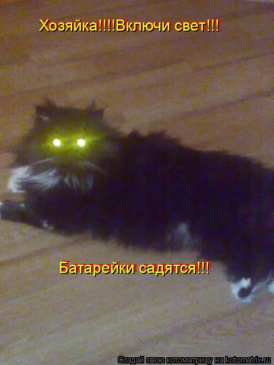 Котоматрица: Хозяйка!!!!Включи свет!!! Батарейки садятся!!! Батарейки садятся!!! Хозяйка!!!!Включи свет!!!