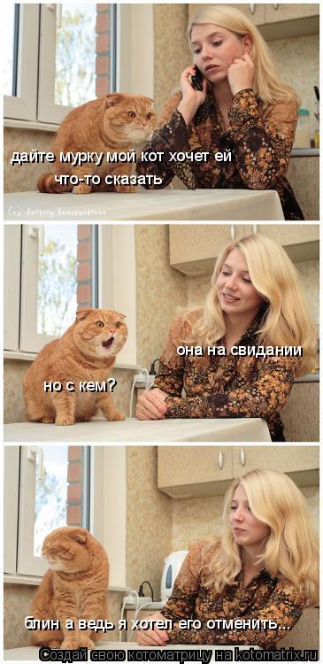Котоматрица: дайте мурку мой кот хочет ей что-то сказать она на свидании но с кем? блин а ведь я хотел его отменить...