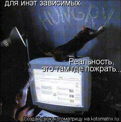 Котоматрица: для инэт зависимых Реальность это там где пожрать , ...