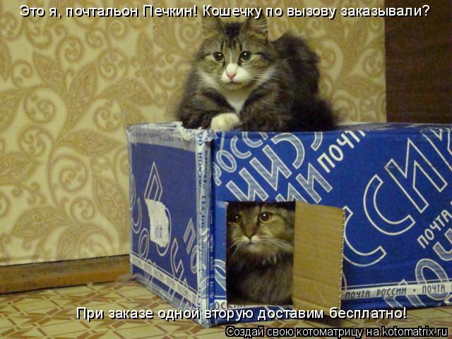 Котоматрица: Это я, почтальон Печкин! Кошечку по вызову заказывали? При заказе одной вторую доставим бесплатно!