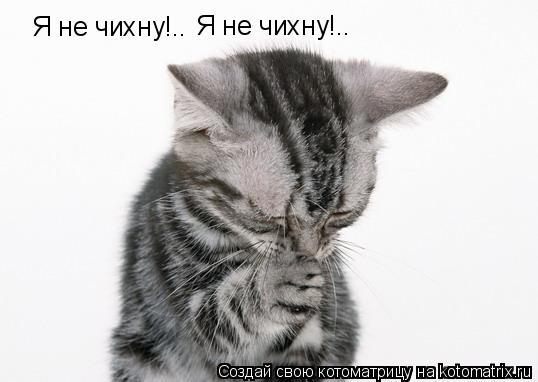 Котоматрица: Я не чихну!.. Я не чихну!..