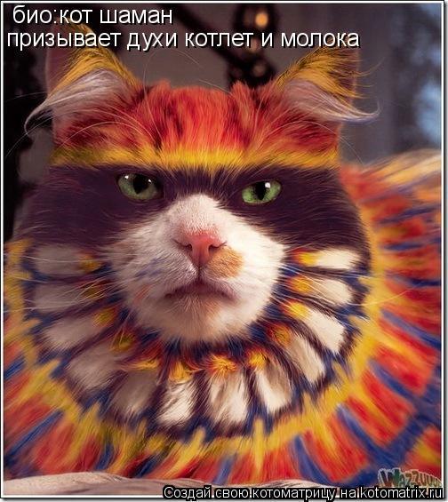 Котоматрица: био:кот шаман  призывает духи котлет и молока