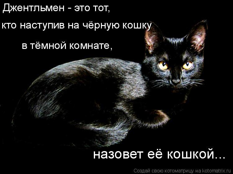 Котоматрица: Джентльмен - это тот,  назовет её кошкой... кто наступив на чёрную кошку в тёмной комнате,