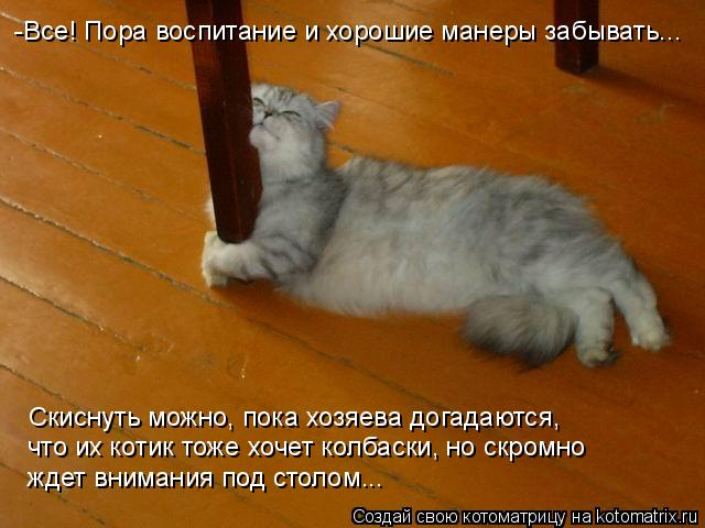 Котоматрица: -Все! Пора воспитание и хорошие манеры забывать... Скиснуть можно, пока хозяева догадаются,  что их котик тоже хочет колбаски, но скромно  жде