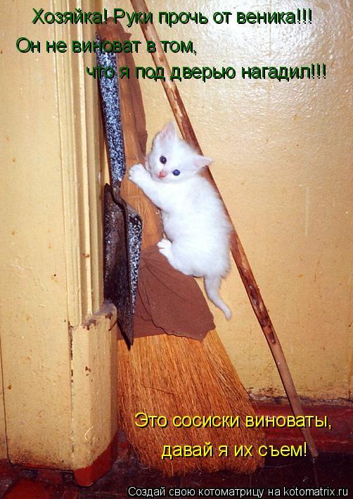 Котоматрица: Хозяйка! Руки прочь от веника!!! Он не виноват в том, что я под дверью нагадил!!! Это сосиски виноваты, давай я их съем!