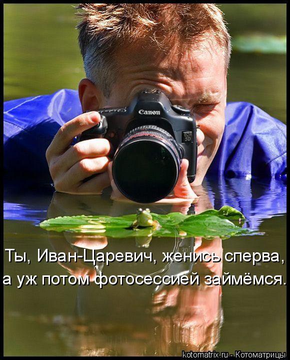 Котоматрица: Ты, Иван-Царевич, женись сперва, а уж потом фотосессией займёмся.