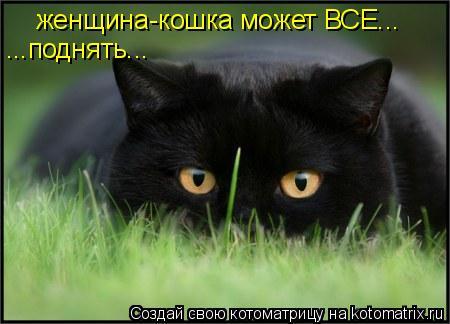 Котоматрица: женщина-кошка может ВСЕ поднять... женщина-кошка может ВСЕ... ...поднять...