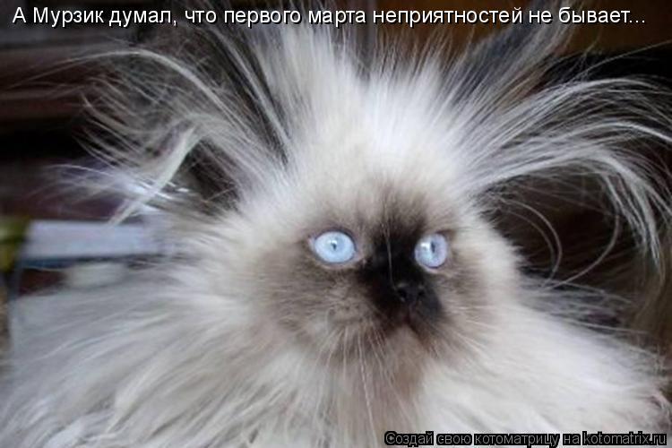 Котоматрица: А Мурзик думал, что первого марта неприятностей не бывает...