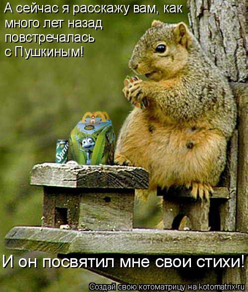 Котоматрица: А сейчас я расскажу вам, как  много лет назад   повстречалась с Пушкиным! И он посвятил мне свои стихи!