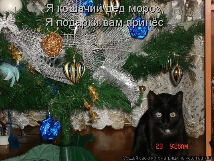 Котоматрица: Я кошачий дед мороз, Я подарки вам принёс