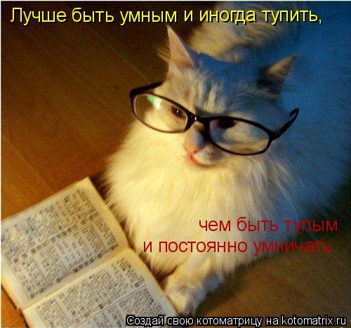 Котоматрица: Лучше быть умным и иногда тупить, чем быть тупым и постоянно умничать.