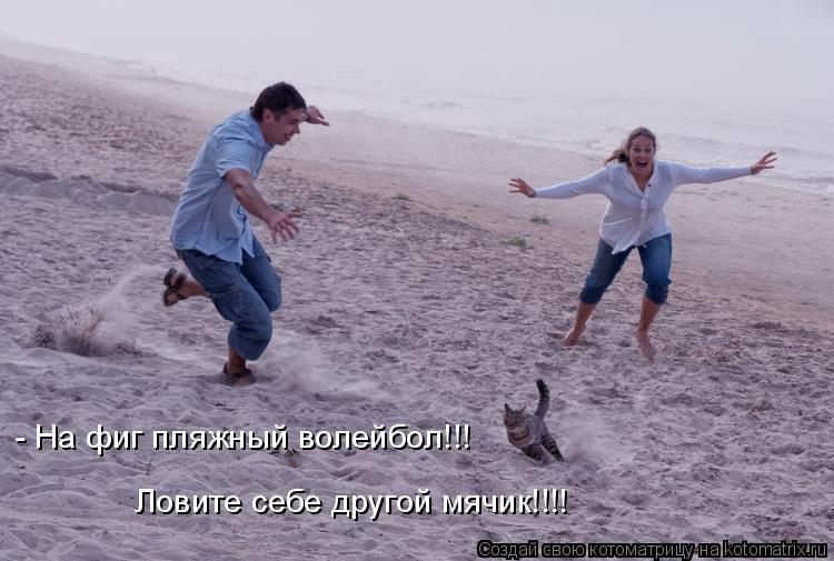 Котоматрица: - На фиг пляжный волейбол!!! Ловите себе другой мячик!!!!