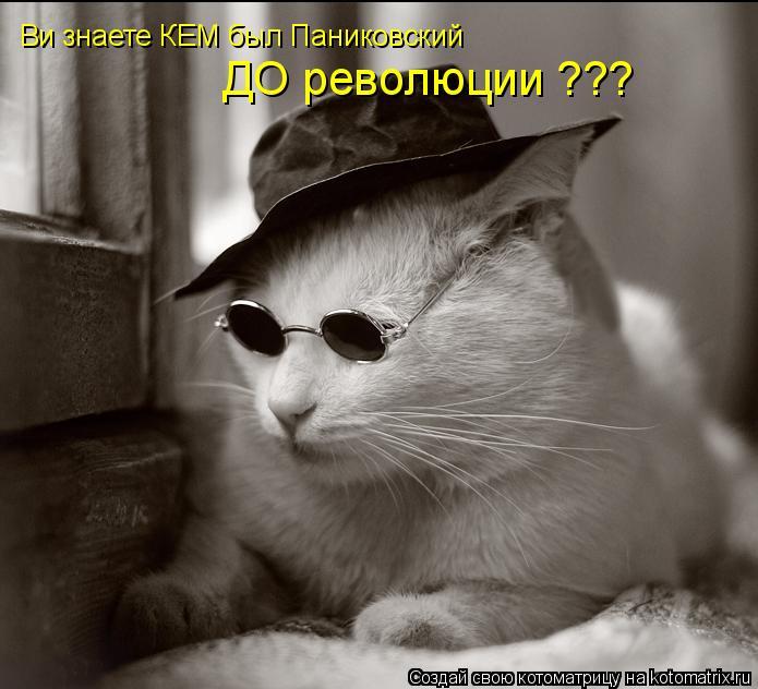 Котоматрица: Ви знаете КЕМ был Паниковский  ДО революции ???