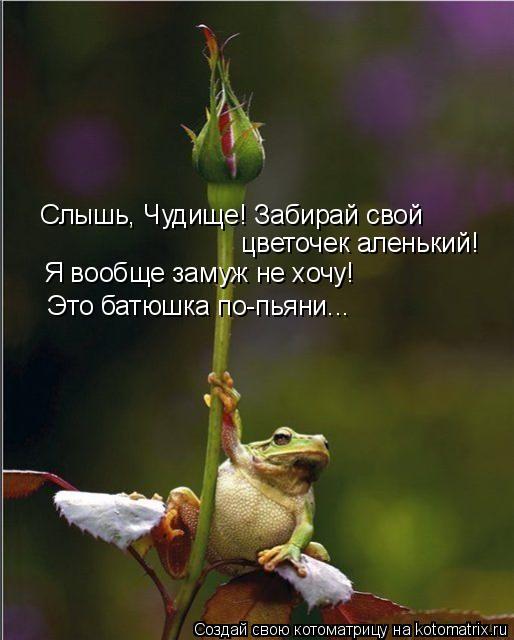 Котоматрица: Слышь, Чудище! Забирай свой цветочек аленький! Я вообще замуж не хочу! Это батюшка по-пьяни...