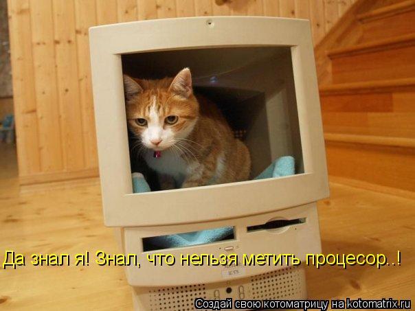 Котоматрица: Да знал я! Знал, что нельзя метить процесор..!