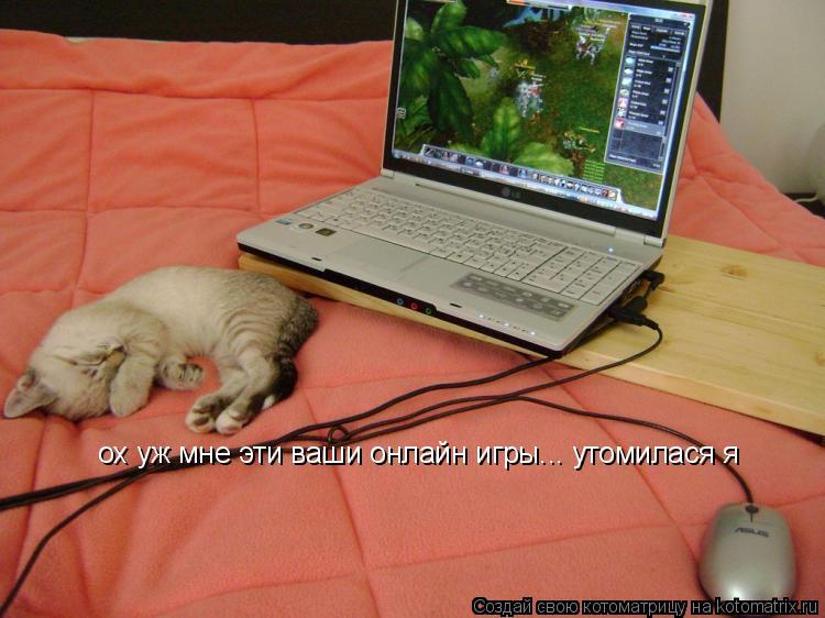 Котоматрица: ох уж мне эти ваши онлайн игры... утомилася я