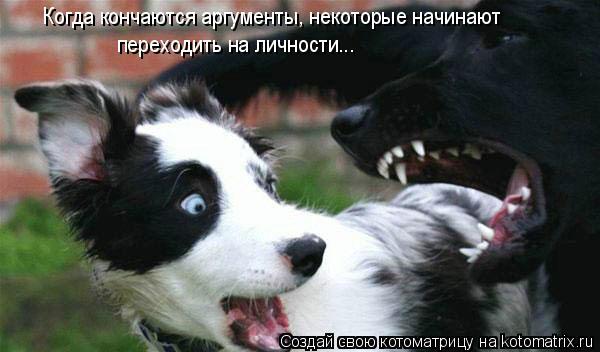 Котоматрица: Когда кончаются аргументы, некоторые начинают переходить на личности...