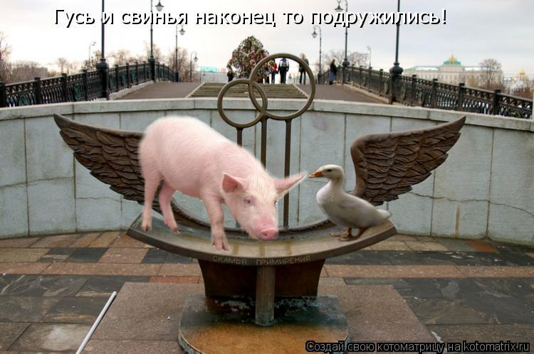 http://kotomatrix.ru/images/lolz/2009/09/21/362468.jpg