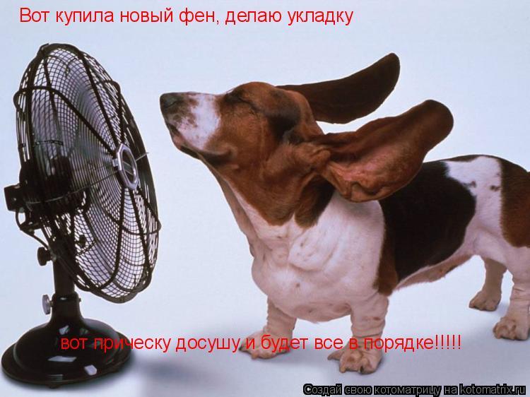 Котоматрица: Вот купила новый фен, делаю укладку вот прическу досушу и будет все в порядке!!!!!