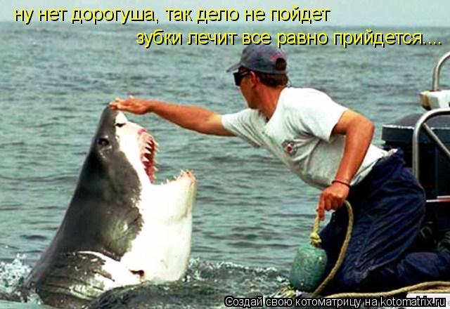 Котоматрица: ну нет дорогуша, так дело не пойдет зубки лечит все равно прийдется....