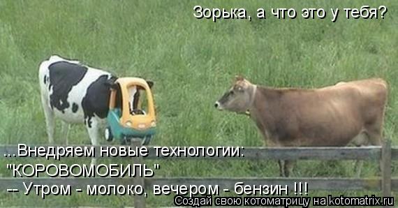 """Котоматрица: Зорька, а что это у тебя? ...Внедряем новые технологии: """"КОРОВОМОБИЛЬ"""" -- Утром - молоко, вечером - бензин !!!"""