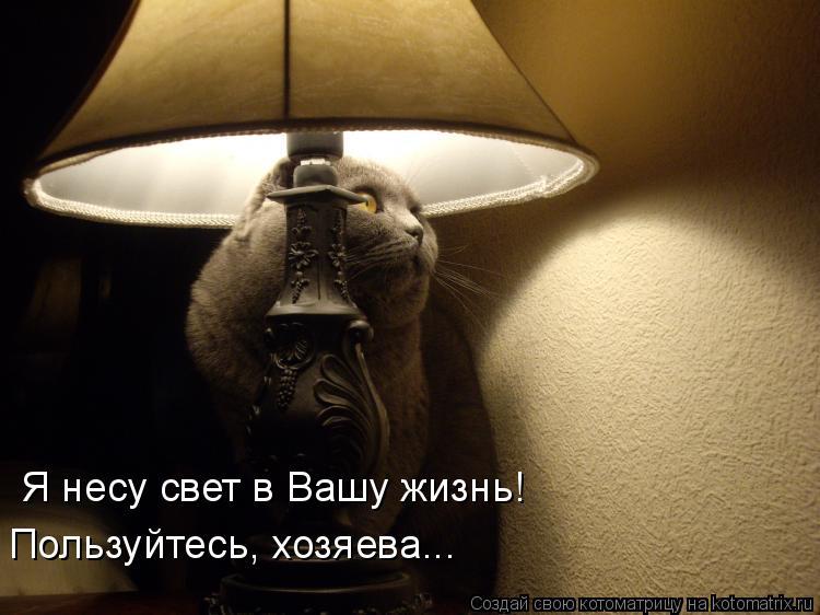 Котоматрица: Я несу свет в Вашу жизнь! Пользуйтесь, хозяева...